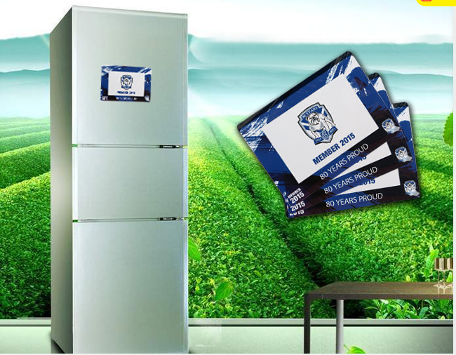 Refrigerator Magnetic Bookmark with custom logo printing